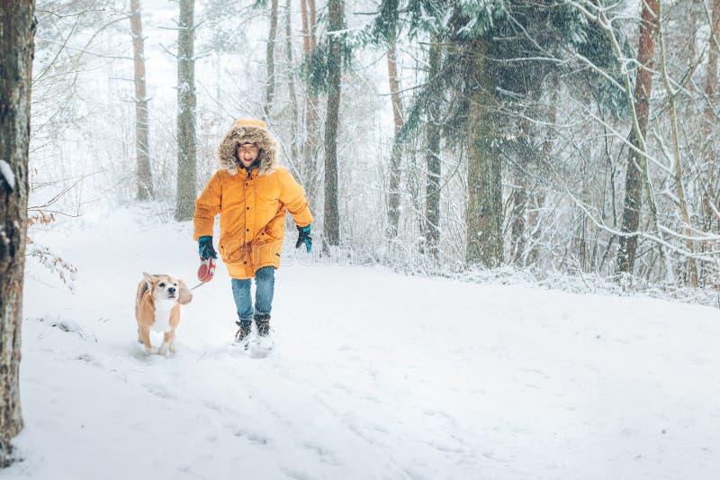 Pojken i ljus gul anorak går med hans beaglehund i snöig pinjeskog som går med husdjur och bild för vinterdräktbegrepp royaltyfria foton