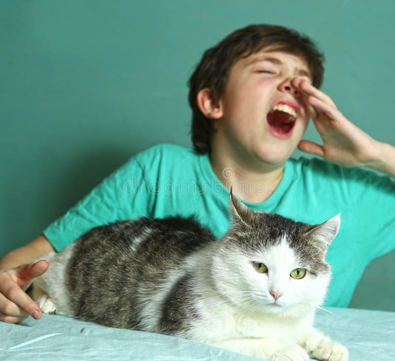Pojken med allergi på kattpäls sniffar tätt upp fotoet arkivfoton