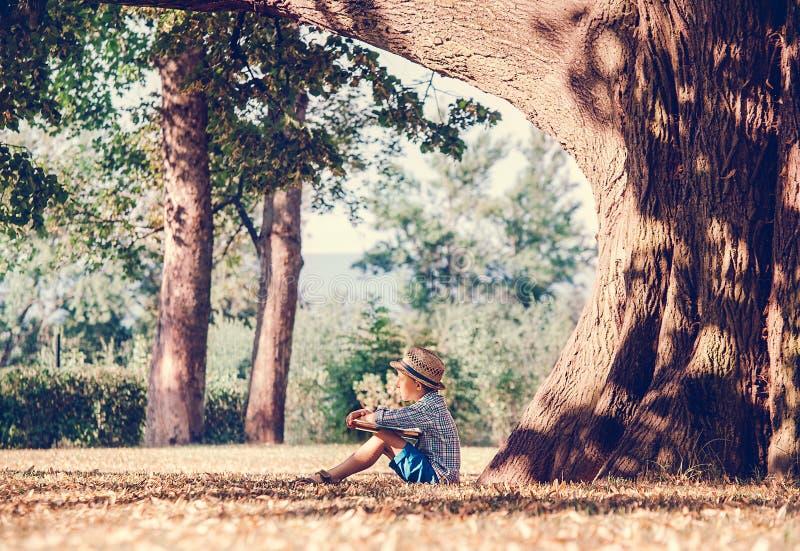 Pojken med boken sitter under stort träd i guld- sommareftermiddag arkivfoton