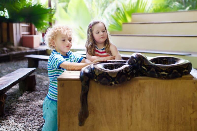 Pojken och flickan rymmer och matar pytonormormen på zoo royaltyfria bilder