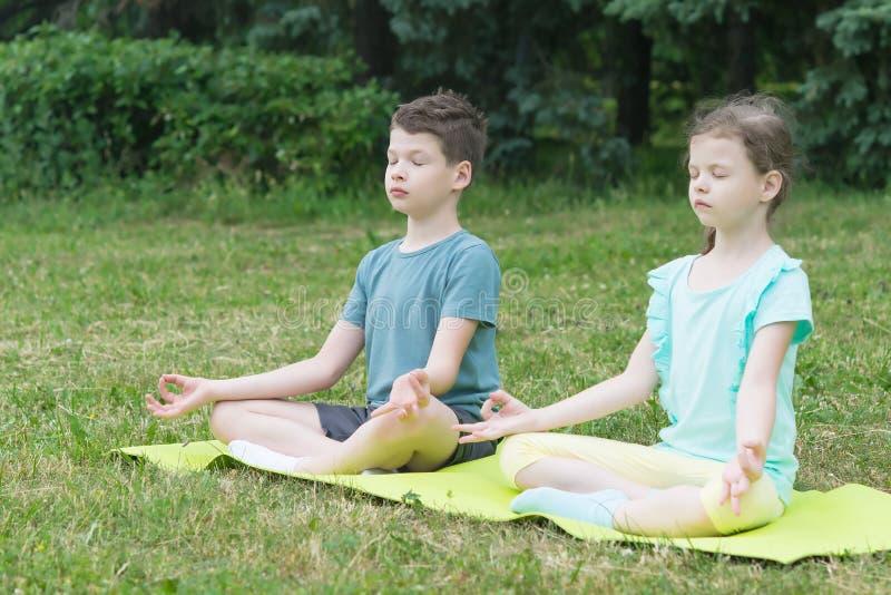 Pojken och flickan sitter i en lotusblommaposition på en grön filt i parkerar royaltyfri bild