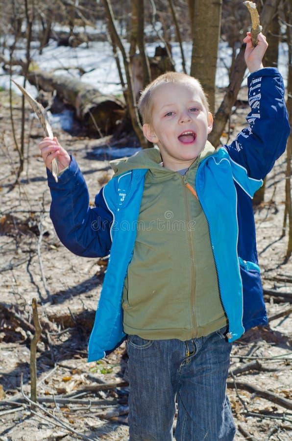 Pojken samlar vedträ i skogen arkivbild