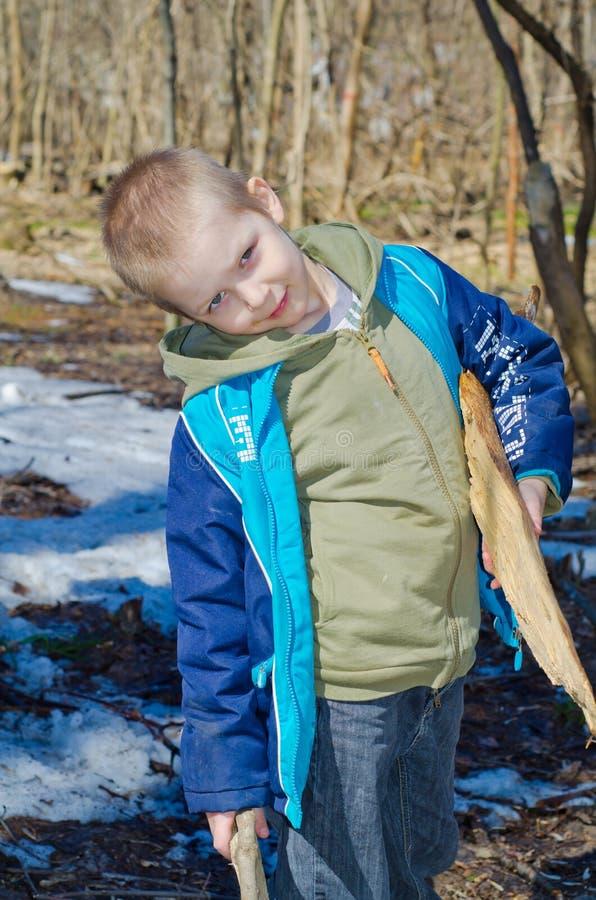 Pojken samlar vedträ i skogen royaltyfria bilder