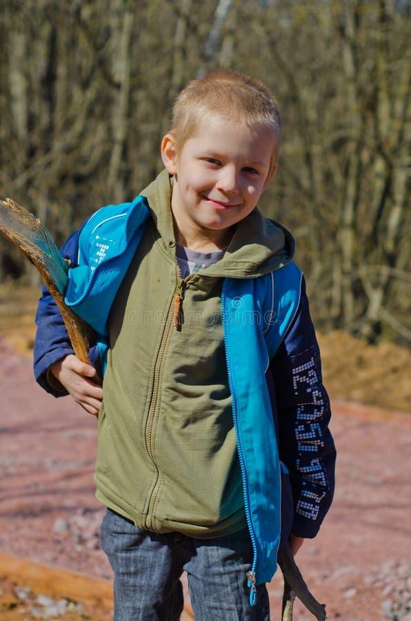 Pojken samlar vedträ i skogen royaltyfri foto