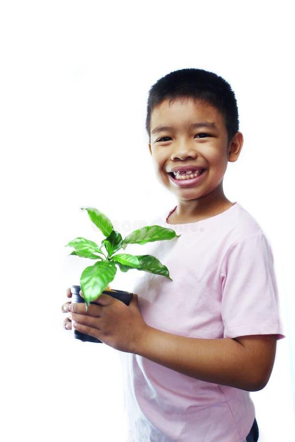 Pojken som rymmer en kruka av plantor arkivbild