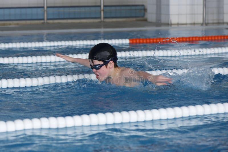 Pojken utbildar i simbassäng, för competen royaltyfri foto