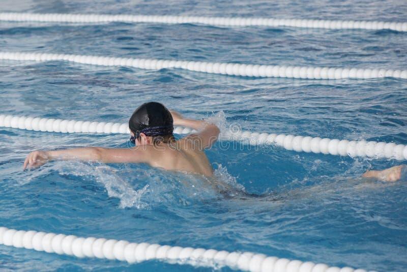 Pojken utbildar i simbassäng, för competen royaltyfri bild