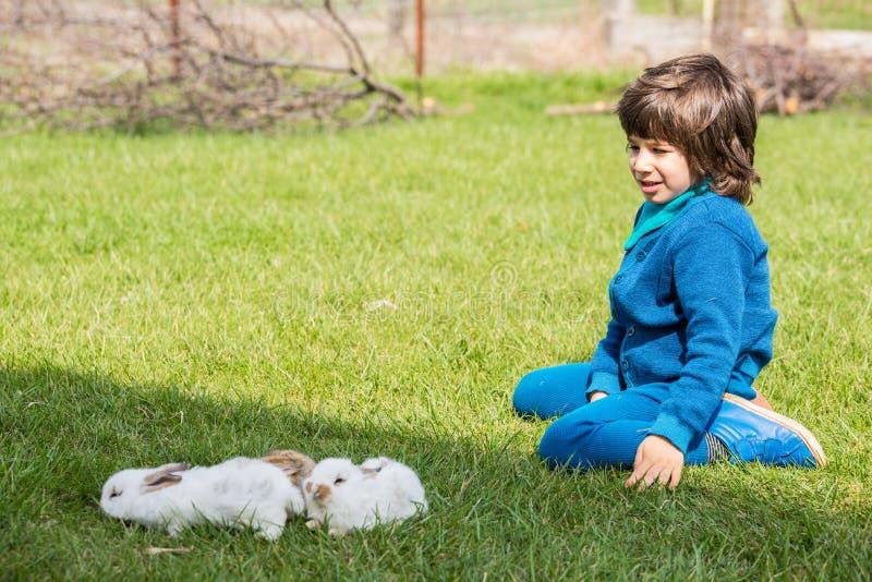 Pojkesammanträde på gräs med små kaniner arkivfoton