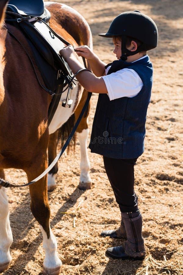 Pojkesammanträde på hästbaksidan royaltyfri fotografi
