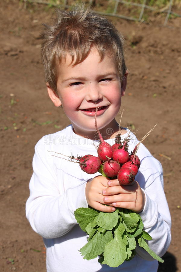 pojketrädgårdsmästarebarn fotografering för bildbyråer