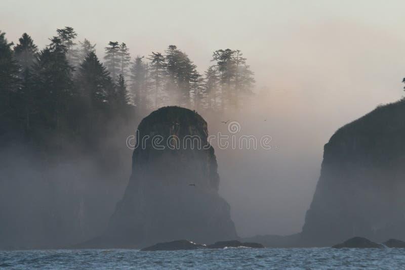 pokój brzegowi dzikie seastacks obrazy royalty free