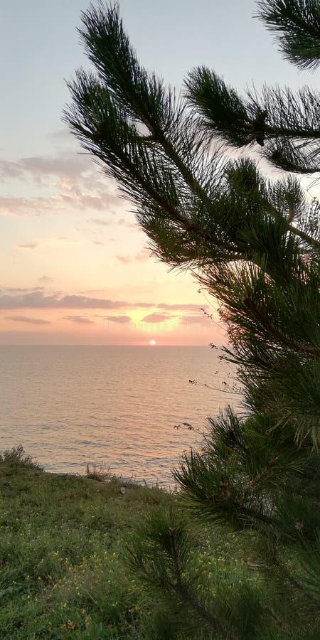 Pokój i zaciszność jesieni morze Spokojny dostojny naturalny tło zdjęcia royalty free