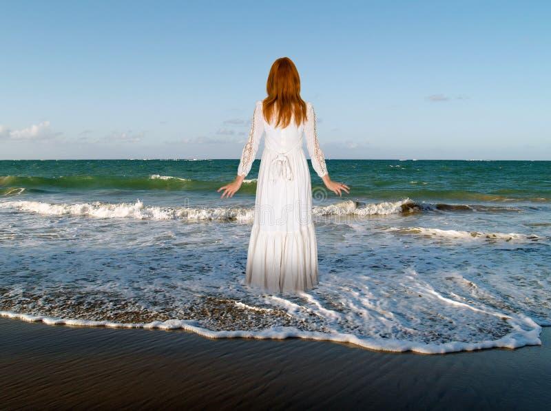 Pokój, miłość, nadzieja, czystość, natura fotografia royalty free