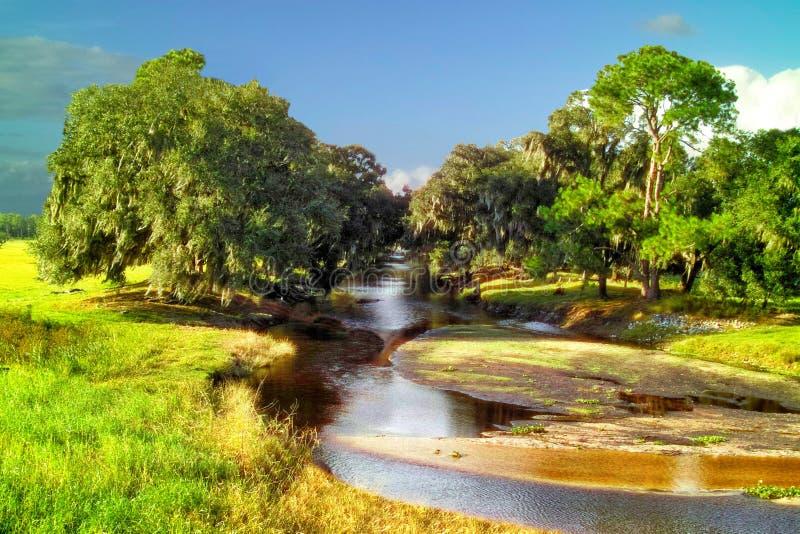 Pokój rzeka Floryda obrazy royalty free