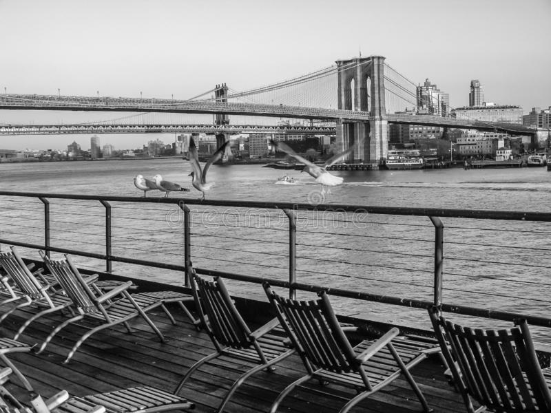 Pokładu most brooklyński i krzesła fotografia royalty free