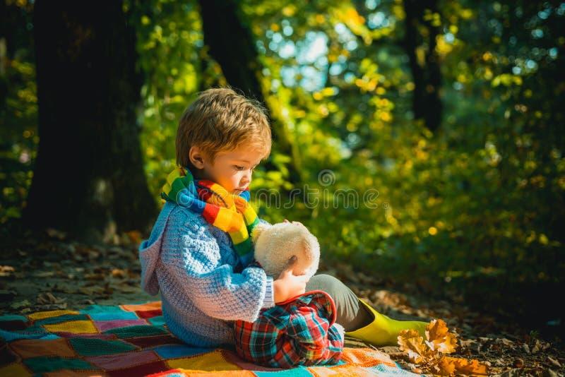 Pokazuję ci piękno natura Nieodłączny z zabawką Chłopiec śliczny dzieci bawią się z misia lasu tłem kochanie zdjęcie royalty free