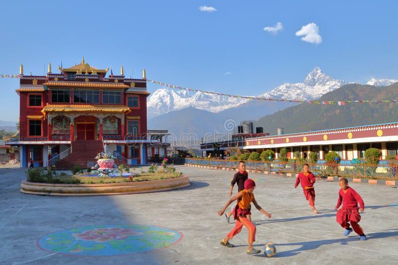 POKHARA, NEPAL - 10 GENNAIO 2015: Monaci che giocano a calcio nel cortile di un tempio tibetano vicino ai wi delle montagne di Po fotografia stock