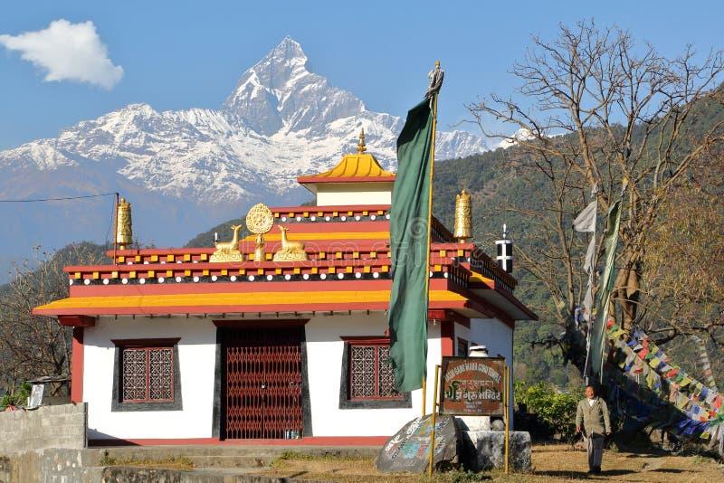 POKHARA NEPAL - JANUARI 10, 2015: Tibetan Tashi Gang Maha Guru tempel med det Machapuchare maximumet i bakgrunden nära Pokhara fotografering för bildbyråer