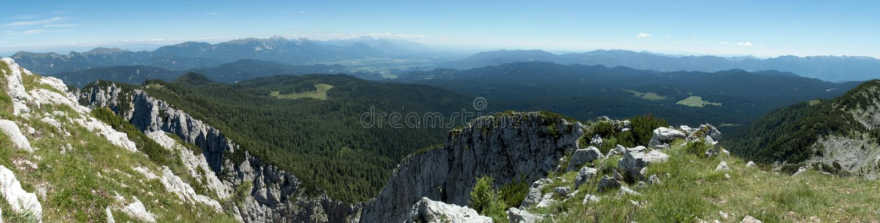 Pokljuka vom Abhang von Debela PEC-Berg in Nationalpark Triglav in Julian Alps in Slowenien lizenzfreies stockfoto
