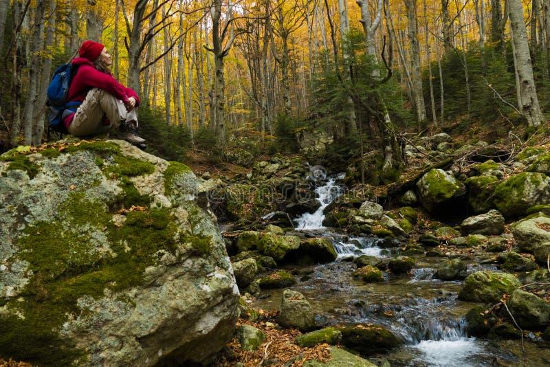 Pokojowy jesienny raj obraz royalty free