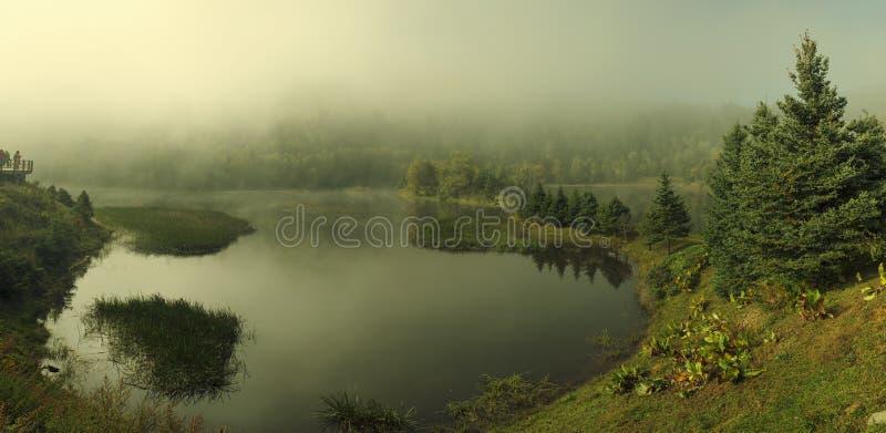 pokojowy jezioro krajobraz w mgle fotografia royalty free