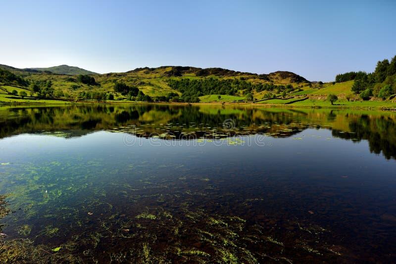 Pokojowy odbicie na jeziorze obrazy stock