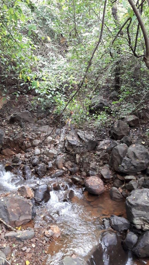 Pokojowy strumień zdjęcie royalty free