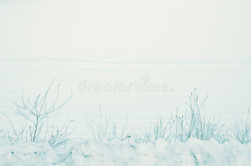 Pokojowy, wiejski zima krajobraz zimny śnieżny nakrycie ziemia ziemia uprawna w wsi cichy Grudzień zdjęcie royalty free