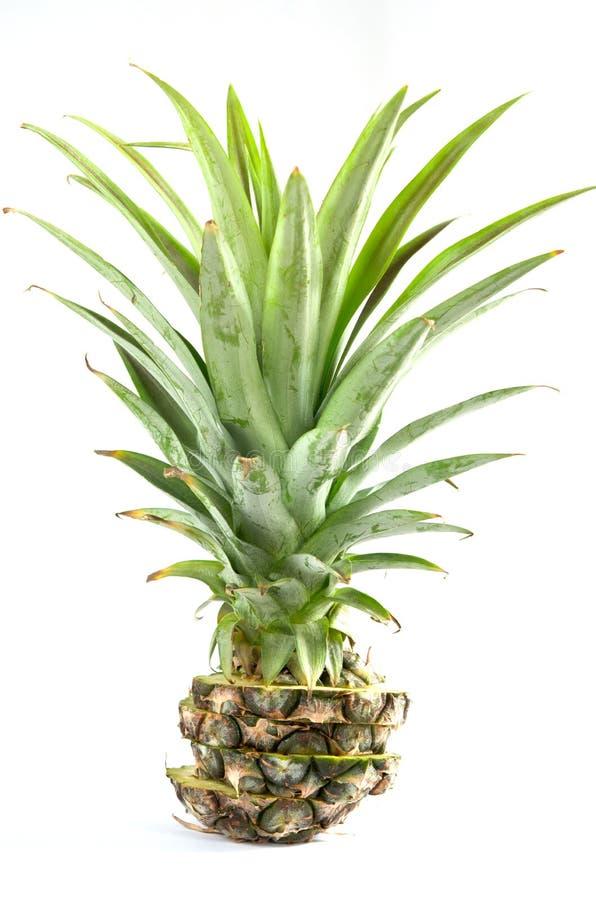 Pokrajać ananas zdjęcia stock