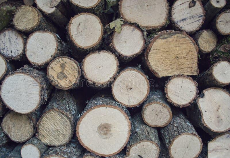 pokrajać drewno obraz royalty free