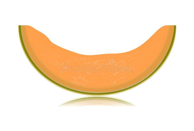 Pokrojony melon odizolowywający na białym tle royalty ilustracja