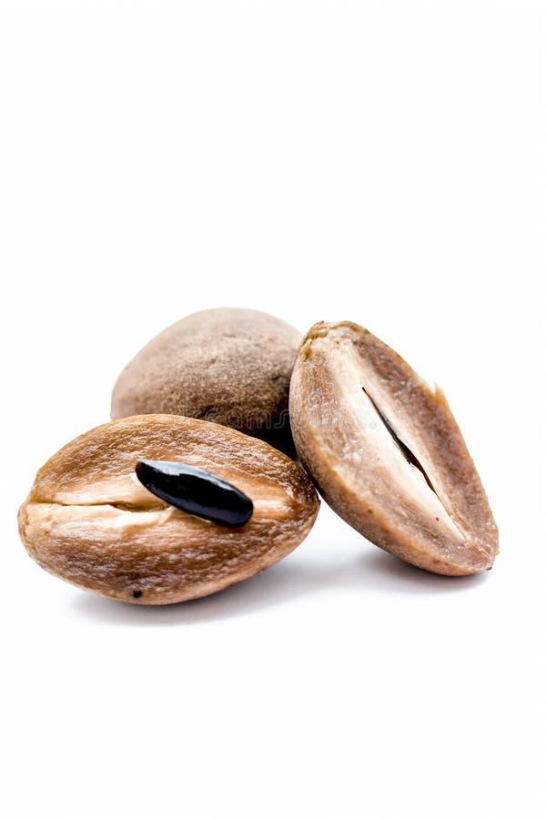 Pokrojony organicznie dojrzały chikoo lub zapota odizolowywający na bielu Sapodilla lub Manilkara obraz stock