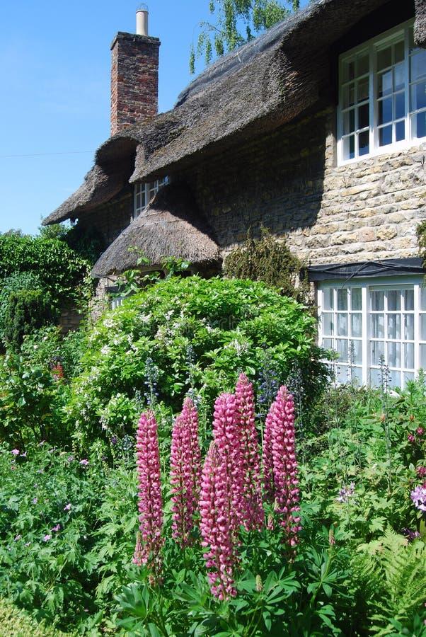 pokrywać strzechą chałupa ogród zdjęcie royalty free