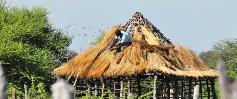 Pokrywać strzechą dach w wiejskim Botswana, Afryka obrazy stock