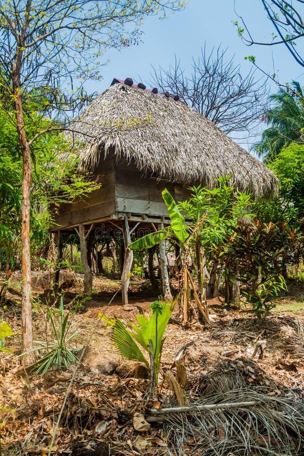 Pokrywająca strzechą buda na stilts, część schronisko na Ometepe wyspie, Nicarag obrazy royalty free