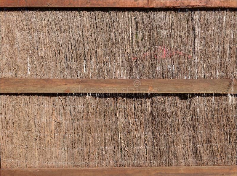 Pokrywający strzechą ścienny z naturalnym sianem lub wysuszoną trawy rośliną dla tła, tło, tekstura, powierzchnia, szczegół, proj obraz royalty free