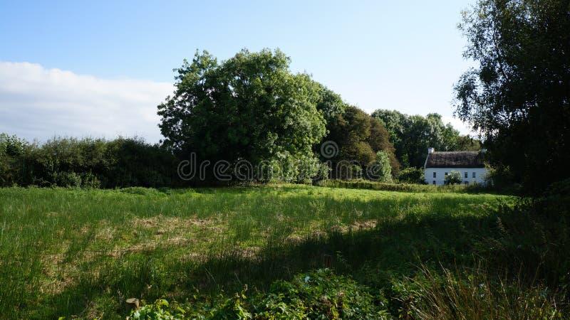 Pokrywający strzechą Irlandzki pole & dom na wsi obraz royalty free