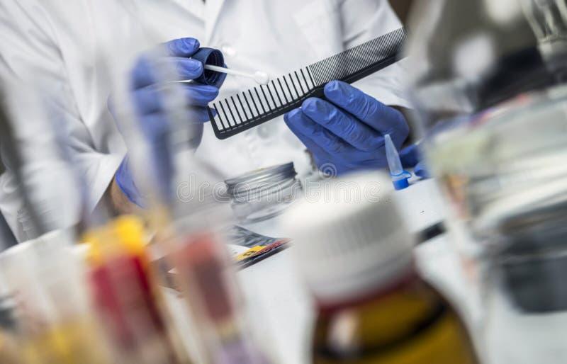 A polícia cientista segura pente de vítima de assassinato para encontrar DNA no laboratório criminal fotografia de stock