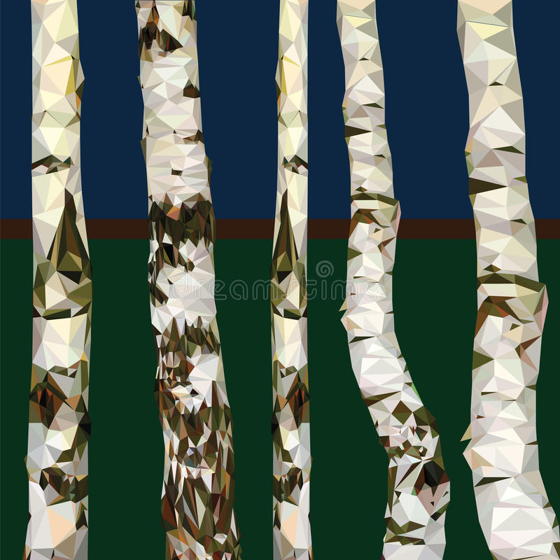 Polígono del abedul del árbol ilustración del vector
