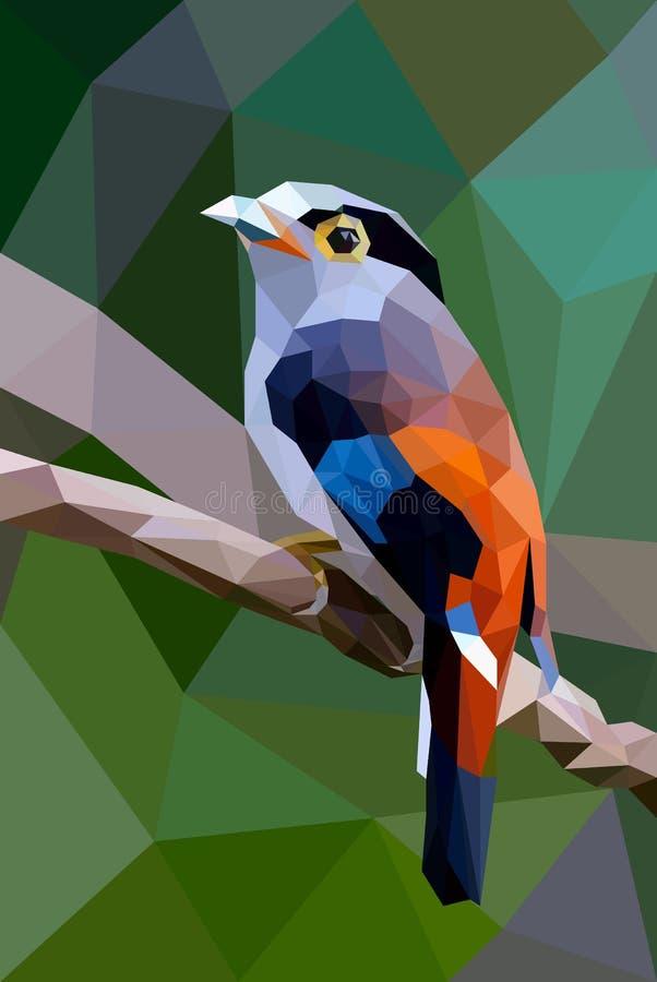 Polígono del pájaro fotos de archivo