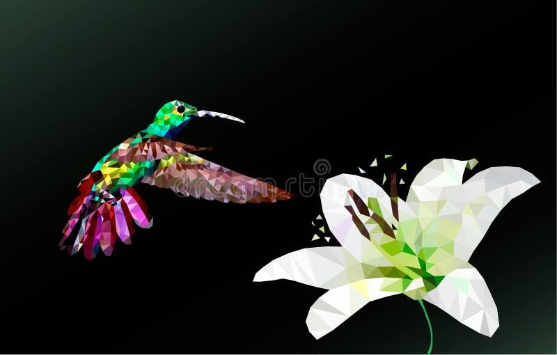 Polígono del vector del colibrí y de la flor ilustración del vector