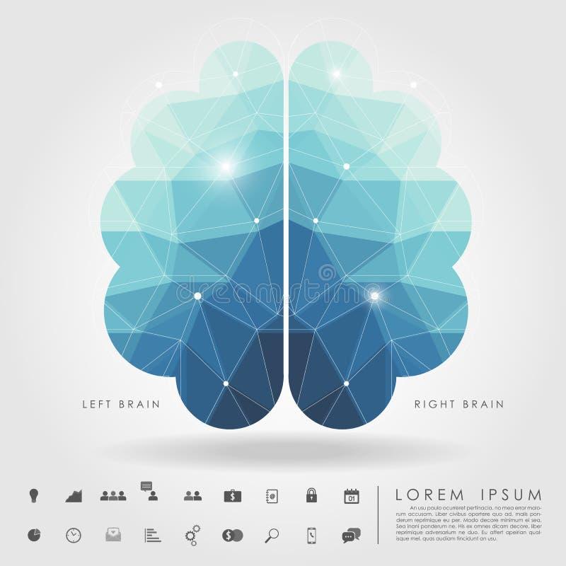 Polígono izquierdo y derecho del cerebro con el icono del negocio ilustración del vector