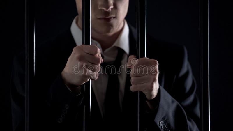 Político que guarda barras da prisão, homem oficial prendido na lavagem de dinheiro fotografia de stock royalty free