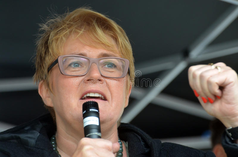 Político Trine Skei Grande do partido liberal imagens de stock royalty free