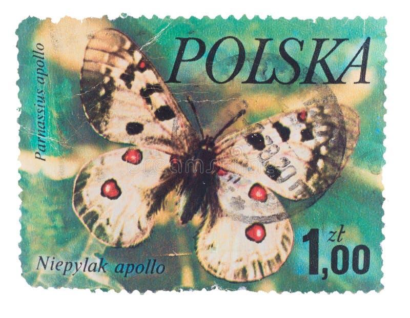POLÔNIA - CERCA DE 1989: Um selo impresso na borboleta M das mostras foto de stock