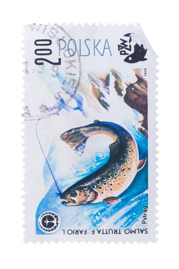 POLÔNIA - CERCA DE 1979: um selo impresso na truta das mostras, imagem de stock