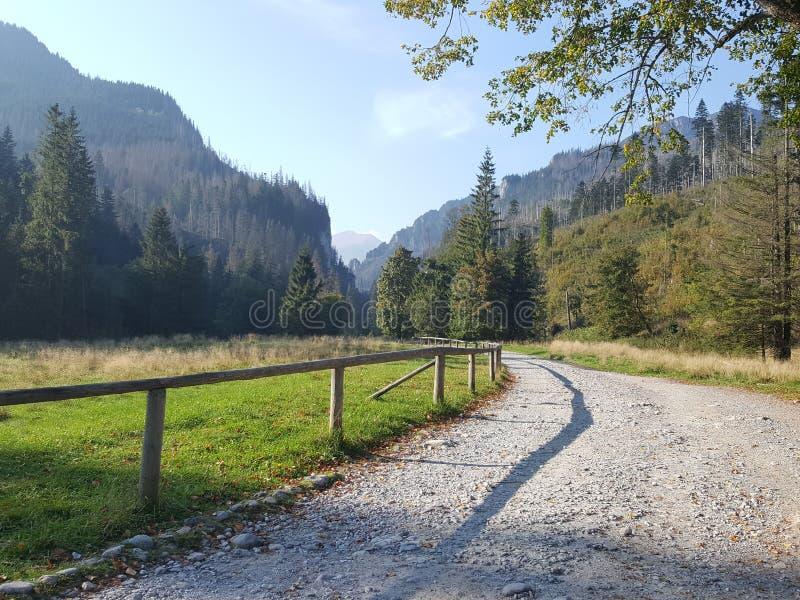 Polônia, Malopolska, montanhas de Tatra - o vale de Koscieliska imagem de stock