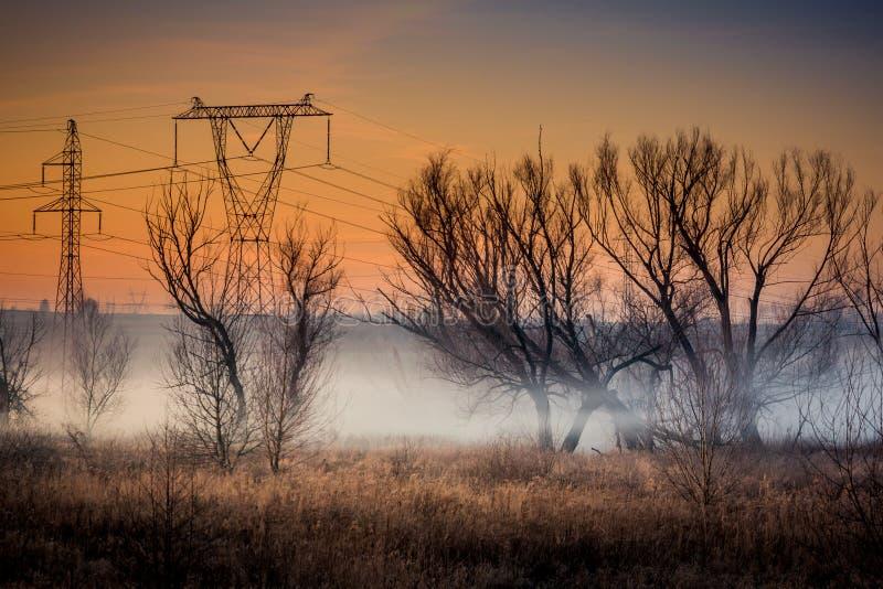 Pol för spänning för nad för kall dimmig afton en hög royaltyfri foto