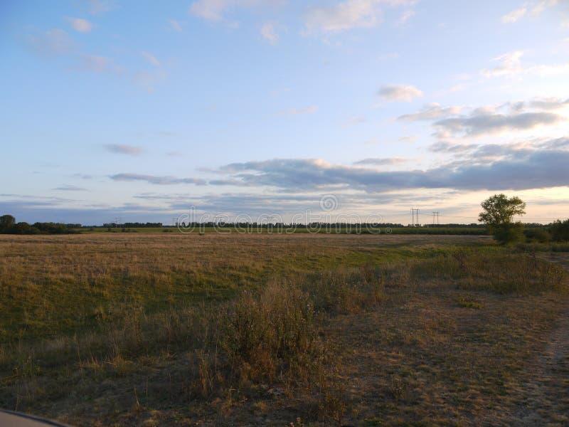 Pola i lasowi paski środkowy chernozem region obrazy royalty free