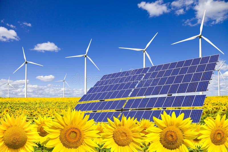 pola panel słoneczny słoneczników turbina wiatr obraz stock